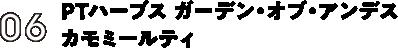 06:PTハーブス ガーデン・オブ・アンデス カモミールティ